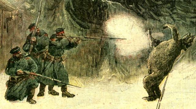 Медвед-1892, скан 300 dpi